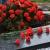 Освящение купола с Крестом, Лития у могилы Неизвестного солдата и праздник в честь Дня Победы